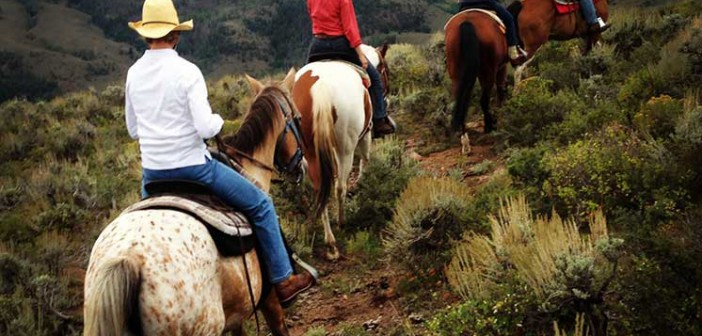 Photo of horseback riding