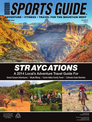 Cover for Straycations 2014