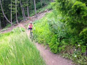sun valley bike