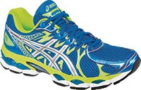 Asics Gel Nimbus 16 shoe