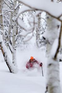 photo of skier at deer valley