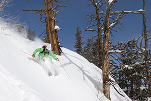 photo of a skier at solitude resort