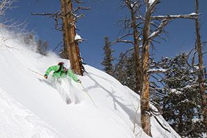 photo of a skier at solitude resort