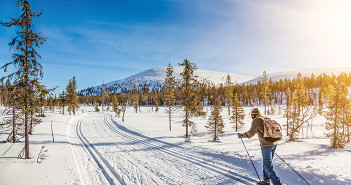 cross-country skiing photo