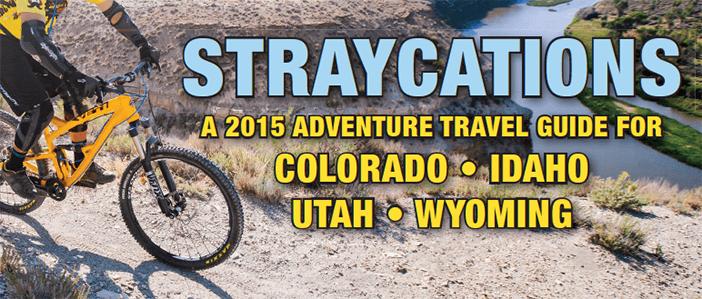 Straycations banner 2015