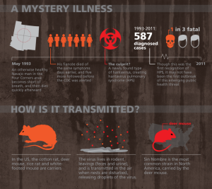 Hatavirus Infographic