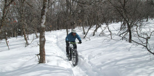 fat biker in the snowy forest