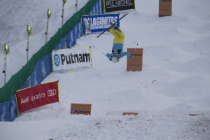 Visa Freestyle World Cup moguls