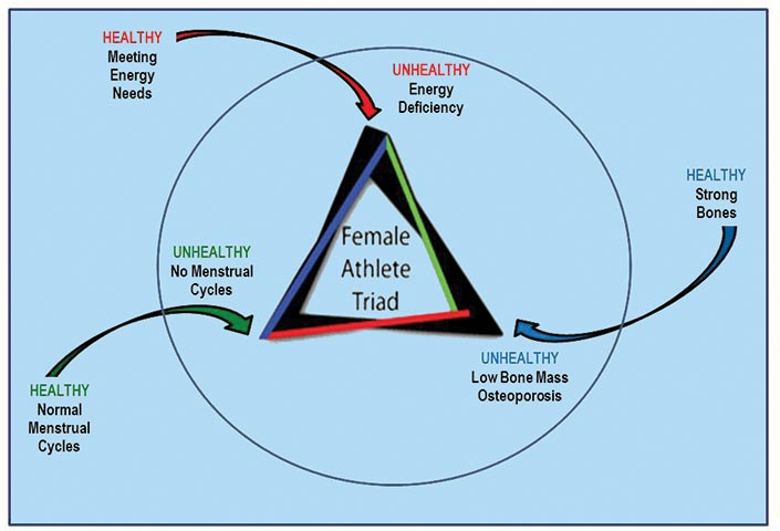 female athletic triad diagram