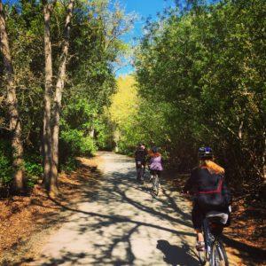 napa biking