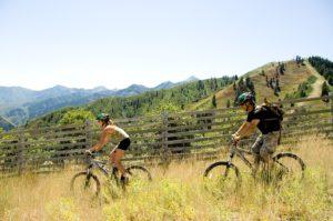 Mountain Biking, photo by Adam Brown