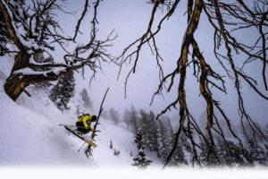 Skier in Utah Powder