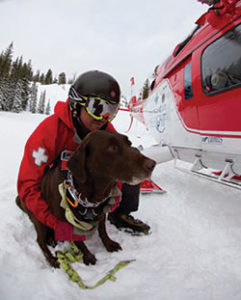 rescue dog with ski patrol waiting next to a helicopter