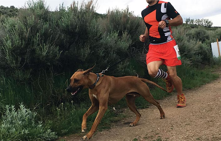 Runner with his dog