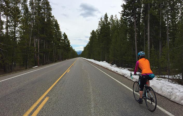 Melissa McGibbon biking on a road near yellowstonr