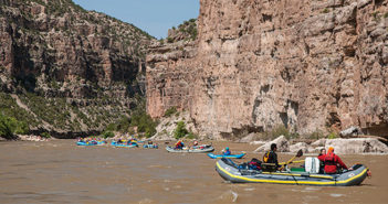 multiple rafts on the river