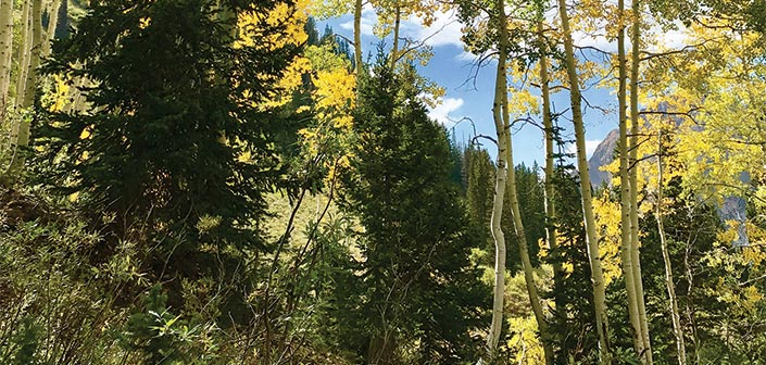 Alpenboch Loop, Little Cottonwood Canyon Utah fall hikes