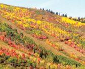 Utah's Best Autumn Mountain Bike Rides