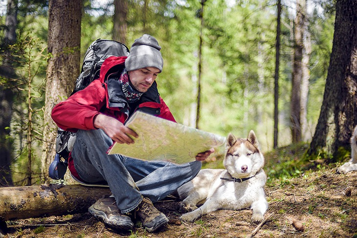 6 essentials for hiking with dogs outdoor sports guide magazine