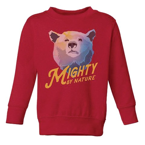 Parks Project Mighty By Nature Youth Sweatshirt image