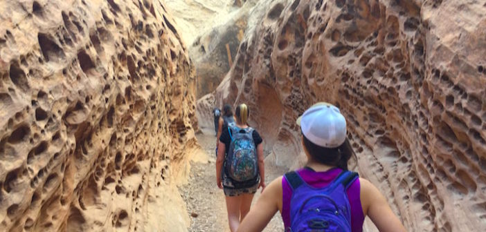 Little Wild Horse Canyon: A Slot Canyon You Won't Forget
