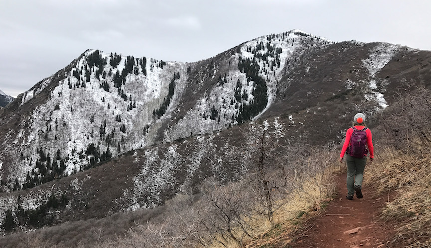 Grandeur Peak Trail in Millcreek Canyon