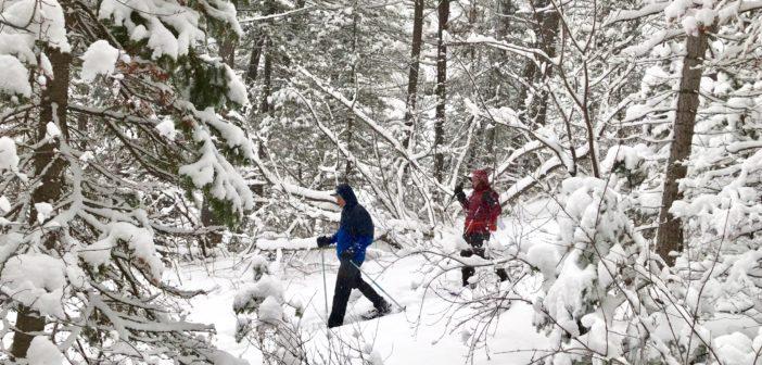 Backcountry Yurting: A Winter Trek Up Millcreek Canyon