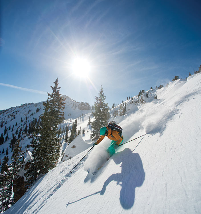 Skier in the powder
