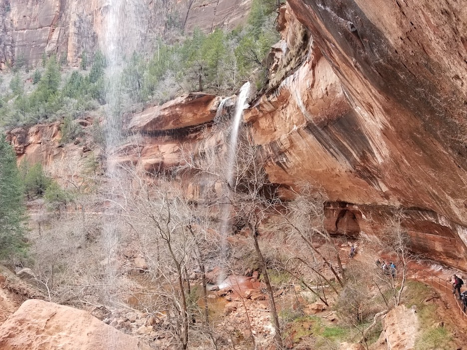 zion national park emerald falls family-friendly hike