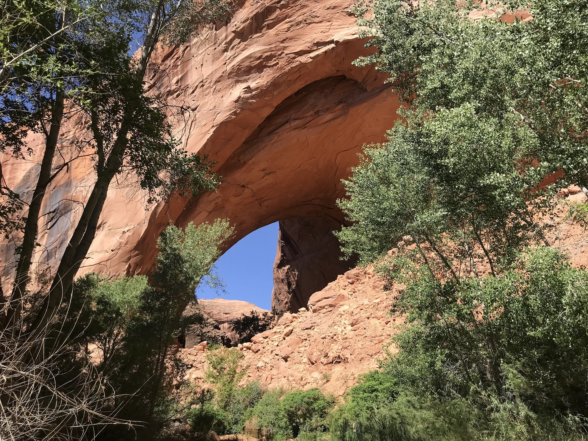 Exploring Along Southern Utah's Hole in the Rock Road
